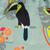 Pop in toucan