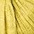 Babylonia Marigold