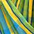 Amazonas lemon